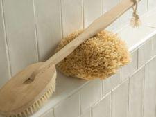 Natural loofa and bath brush